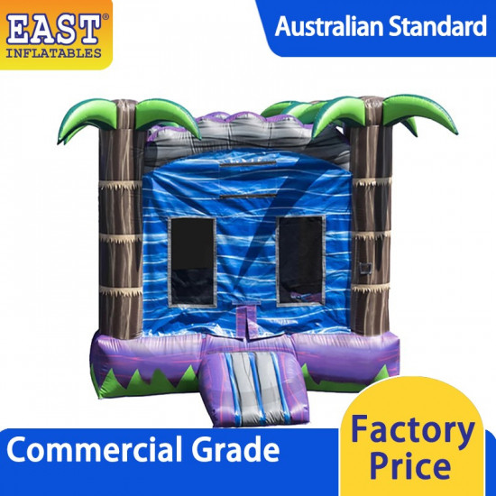 Indoor Jumping Castle