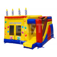 Jumping Castle Birthday Party