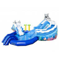 Dolphin Inflatable Water Park