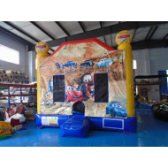 Disney Cars Jumping Castle